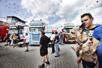 Truckstar Assen hondje Chihuahua